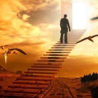Ярас Валюкенас: «Размышления о смысле жизни»